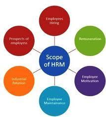 Seven HR strategies and their HR practices | Soft skills in labour market | Scoop.it