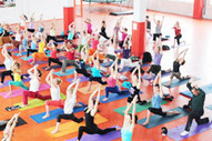 Yoga Teacher Training Rishikesh India | Yoga Meditation classes | Yoga Ashram | Yoga in Rishikesh | Yoga Teacher Training Rishikesh India | Scoop.it