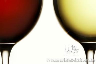 China's wine market shows rosy future despite austerity measures::wines-info | Grande Passione | Scoop.it