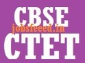 CBSE CTET result 2014 Answer Sheet Cut Off Marks Download ctet.nic.in | Employment News | Scoop.it