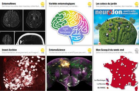 Semaine du Cerveau 2016 | Mon Scoop.it du week-end | Scoop.it