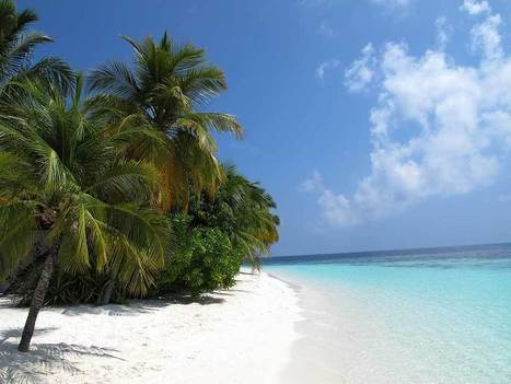 Arriving in Maldives: What to Do | Scuba Diving | Scoop.it