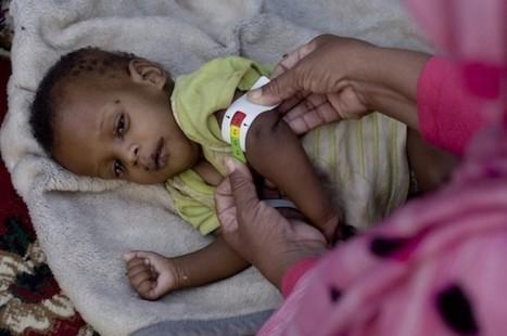 Food Crisis Empties Niger Schools | International aid trends from a Belgian perspective | Scoop.it