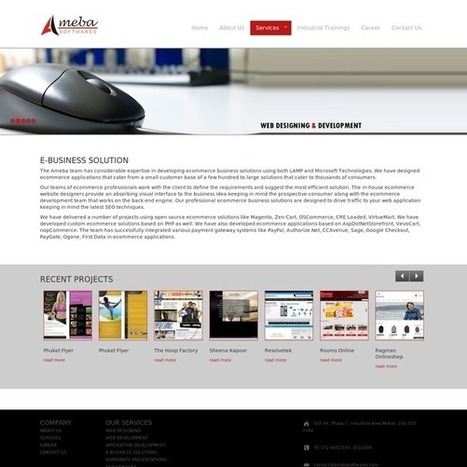Ameba Softwares - E-Business Solutions | Ameba Softwares Pvt LTD | Scoop.it