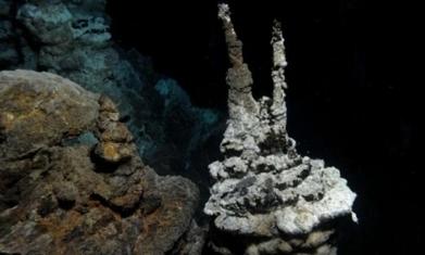 Le chaînon manquant dans l'évolution de la vie découvert ? | Aux origines | Scoop.it