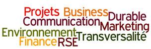 La capacité transversale en RSE: vers plus de cohérence et ROI dans les stratégies globales des entreprises. | RSE & Développement Durable | Scoop.it