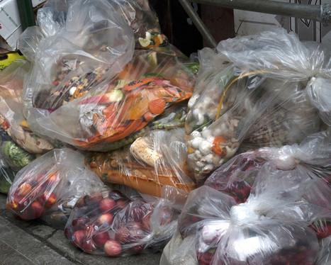 Distribution : comment réduire le gaspillage alimentaire ? | Nutrition Santé | Scoop.it