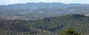 Conservation International : l'accord d'appui à la formation jusqu'en 2013 - Newsmada | Madagascar Conservation News | Scoop.it