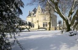 Brunch de Noël au Château Pape Clément, Grand Cru Classé des Graves | Le Blog de Bernard Magrez | Wine Tourism France | Scoop.it