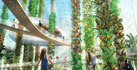 Una selva urbana para producir alimentos | AteBur | Scoop.it
