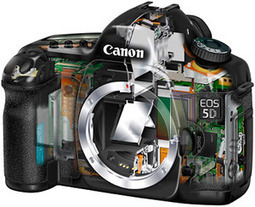 Canon EOS 5Dmk3 DSLR rumor update from NorthLight Images | Photography Gear News | Scoop.it
