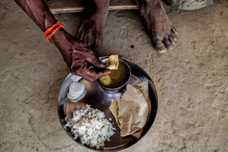 Why Can't India Feed Its People?   Food Security   Scoop.it