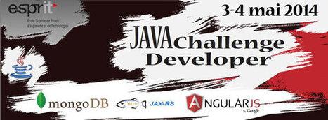 Le Java developer challenge 2014 @ ESPRIT - Tekiano | java.veille | Scoop.it