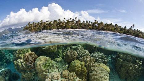 Le fonds vert pour le climat reste un casse-tête pour les petits pays | Planete DDurable | Scoop.it