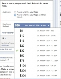 Facebook Pages Are a Bad Investment for Small Businesses - Forbes | WEBOLUTION! | Scoop.it