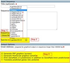 5 Server for Gene Prediction from Plant Genome ~ Bioinformatics ... | Plant Genomics | Scoop.it