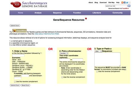 SGD: Saccharomyces Genome Database | bioinformatics-databases | Scoop.it