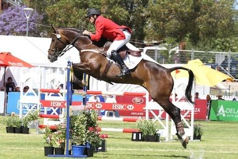 Australia's Stuart Tinney eyes third Adelaide 4* Event win   Fran Jurga: Equestrian Sport News   Scoop.it