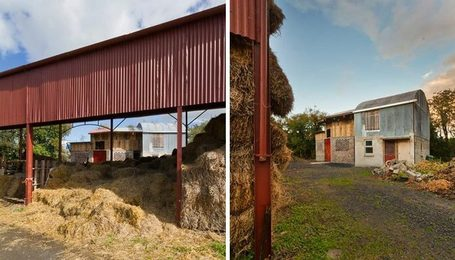 the cowshed collective brings sustainability to social farming | Sustain Our Earth | Scoop.it