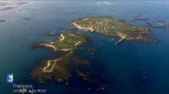 Thalassa vous fait redécouvrir les îles de Bretagne - France 3 Bretagne | Vieux Greements et Traditions | Scoop.it