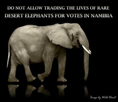 Stop the Trophy Hunting of Six of Last Desert Elephants in Namibia | The Fight for Elephant & Rhino Survival | Scoop.it