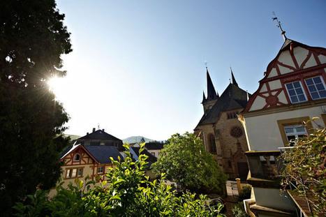Germany: VDP Report on the 2012 Vintage | Vitabella Wine Daily Gossip | Scoop.it