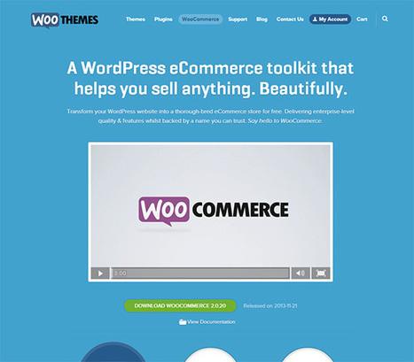 Factors to Consider When Choosing an E-Commerce Platform ... | Ecommerce | Scoop.it