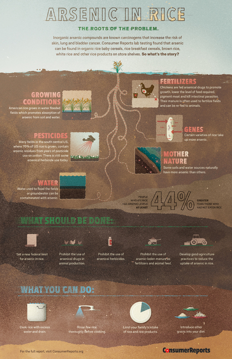 Info-graphic: How Arsenic Gets Into Rice and Tips to Limit Your Exposure | Not In My Food | Tips & Guides | Scoop.it
