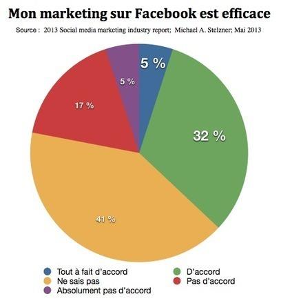 Marketing sur les réseaux sociaux en 2013, tous les chiffres | Digital Marketing B2C | Scoop.it