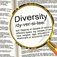 SEO Diversity: The Key To Getting Ahead In 2013 | SEO Tips and Guides | Scoop.it