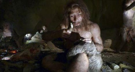 Cuerpo neandertal, mente sapiens | Los ojos humanos y de calamares evolucionaron a través de los mismos genes | Scoop.it