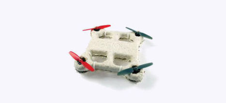 Drones Made Out of Mushrooms Will Decompose When They Crash-Land | News we like | Scoop.it