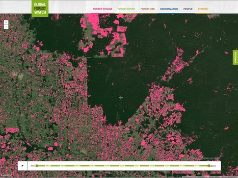 Google Lat Long: Monitoring the World's Forests with Global Forest Watch | Planet Earth Phenomenon | Scoop.it