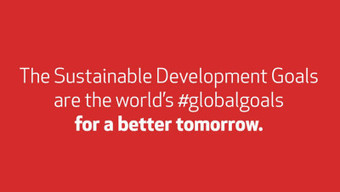 United Nations: Global Goals for Sustainable Development | EU Environment | Scoop.it
