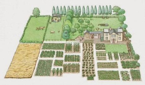 How To Create A Complete Self-Sustaining Homestead On 1-Acre of Land | GMOs & FOOD, WATER & SOIL MATTERS | Scoop.it