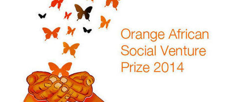 Meet the 10 Orange African Social Venture Prize 2014 finalists who will prepare for investment with VC4Africa   Entrepreneurship in Africa   Scoop.it