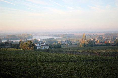 American billionaire buys Chateau Gaby in Bordeaux - Decanter   Planet Bordeaux - The Heart & Soul of Bordeaux   Scoop.it