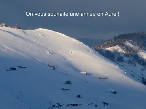 Voeux engrangés pour 2014 | Vallée d'Aure - Pyrénées | Scoop.it