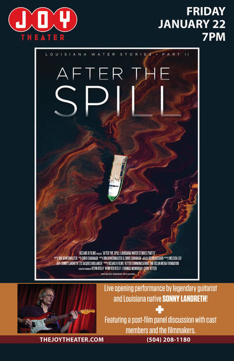 After the Spill: Oil & Coastal Wetland Loss | Coastal Restoration | Scoop.it