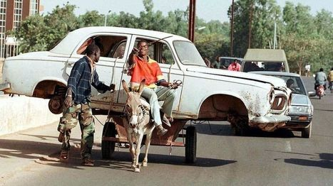 Burkina Faso bans donkey skin exports, affecting Asian trade - BBC News | enjoy yourself | Scoop.it