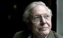 """David Attenborough on """"Frozen Planet""""   Climate change challenges   Scoop.it"""