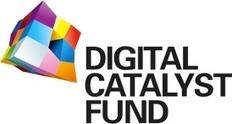 Summer Boot Camp - Digital Catalyst Fund | Startup Watch | Scoop.it