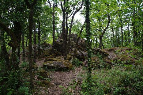 Un des cromlech de Roquebert | Megalithes en photo | Scoop.it