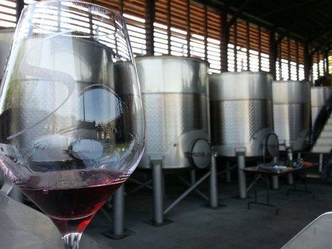 Fermentation alcoolique : vers des vins plus frais et fruités. | Verres de Contact | Scoop.it