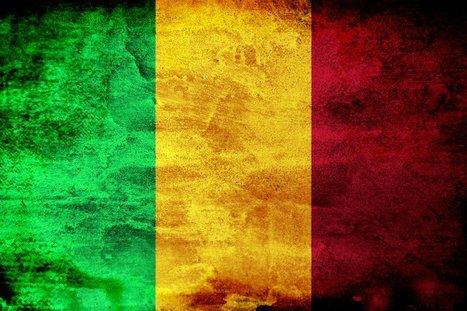 Mali : des djihadistes attaquent une prison et libèrent une cinquantaine de prisonniers | Actualités Afrique | Scoop.it