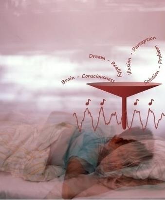 Le manque sommeil bloque irréversiblement la plasticité du cerveau   Prévention de la santé et du stress.   Scoop.it