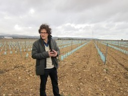 I'll have some Roussillon, hold the Rivesaltes | Wine website, Wine magazine...What's Hot Today on Wine Blogs? | Scoop.it