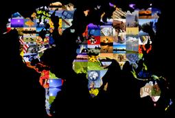 Is Procurement The Same The World Over? - Procurement Leaders (blog) | Procurement | Scoop.it