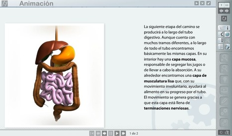 Libros digitales: se abre la veda | ebook | Scoop.it