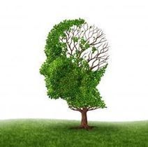 Remedios caseros naturales para la memoria | Somos lo que comemos | Scoop.it
